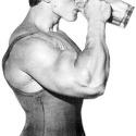 протеин или гейнер